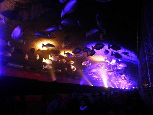 Decembre 2012 Lyon Fete des Lumieres 09