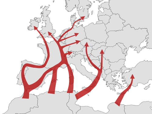 Vanessa_cardui_migration_in_Europe-blank_map