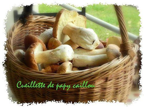 cueillette de papy caillou
