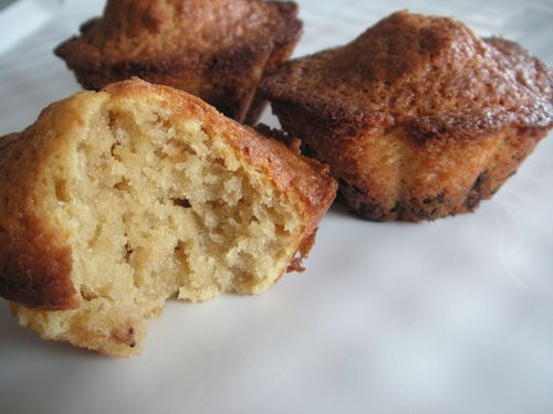 muffins the