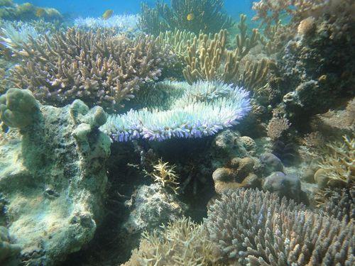 Pulau Seraya