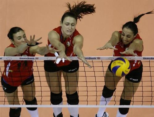 Final-Four-Volley-Dame-2014.JPG