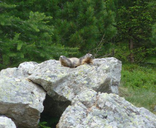 2012-06-27-Lacs de Prasles-007
