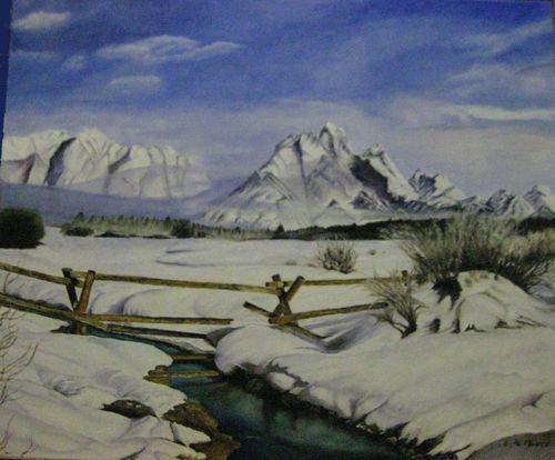 paysage-neigeux.jpg