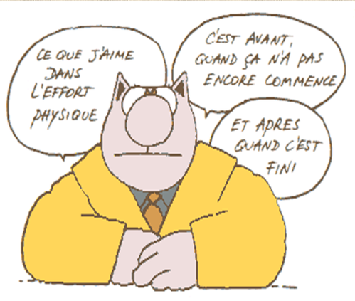 le-chat-3.PNG