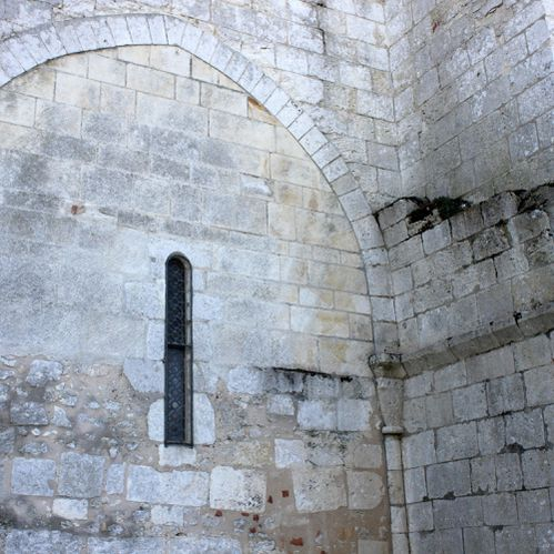 Mornac.St-Sulpice.Oiseaux 094