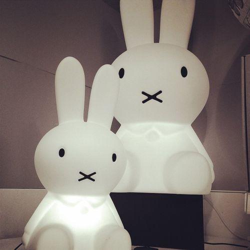 lampes-miffy.jpg