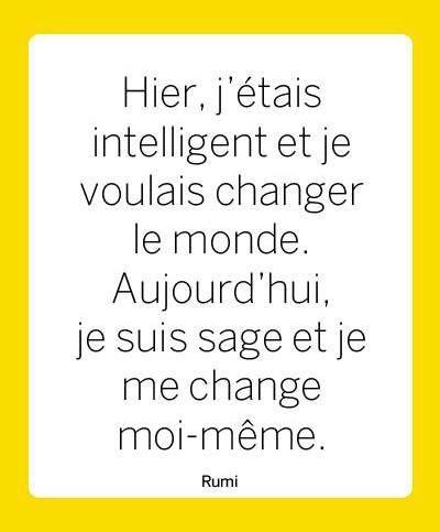 J'Etais Intelligent, Je Suis Sage...