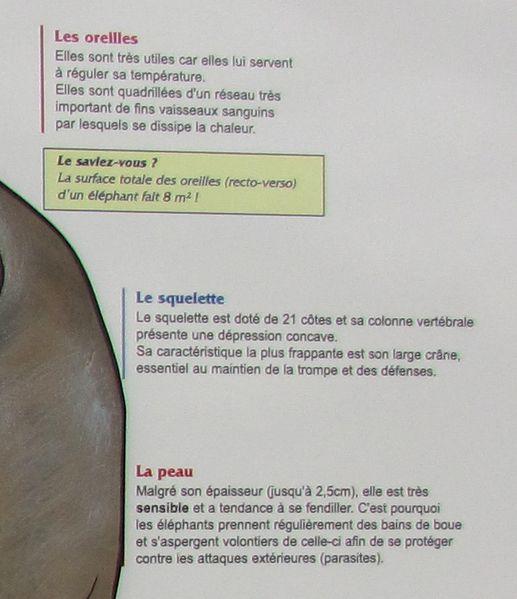 Beauval-4214---Copie.JPG