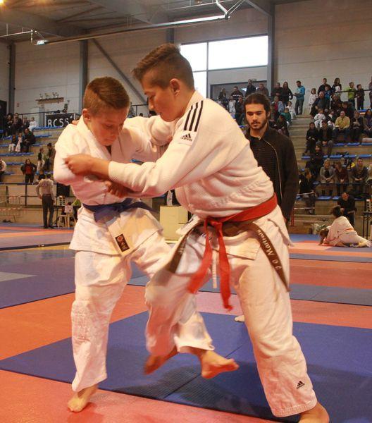judo-Salies-3087.JPG