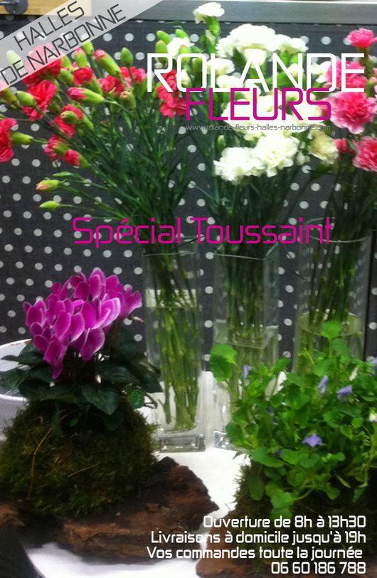 fleurs-toussaint-narbonne
