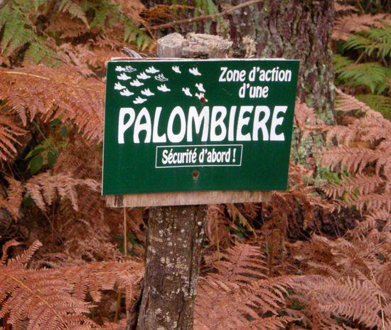 2012-10-25 PALOMBIERE (4)