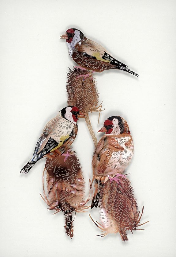 12_tom-gallant-goldfinch-2006-paper-cuts-glass--wood-48-x-3.jpg