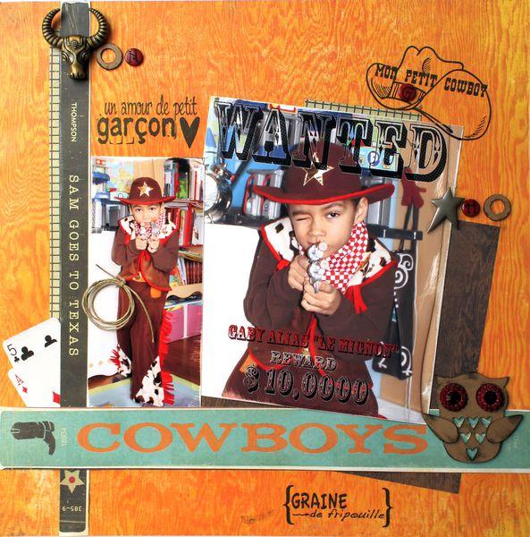 Gabistellapage Cowboy NV 03 2011