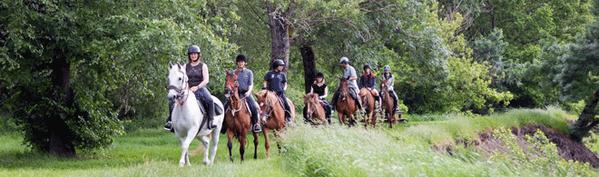 Randonnee-equestre.png