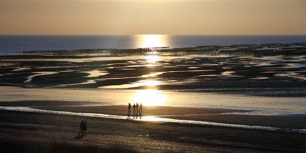 brehal-st-martin-coucher-soleil-sur-les-moulieres 3909