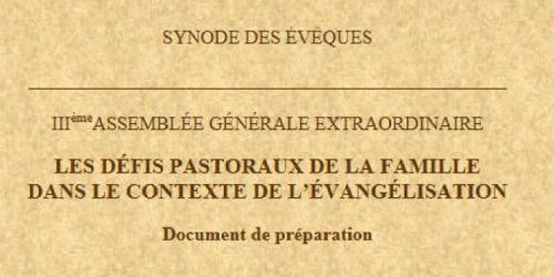 Synode-sur-la-famille-document.jpg