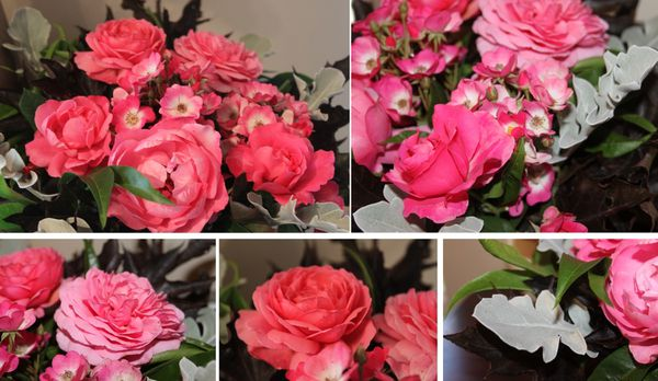 pink-bubble-roses-3.jpg