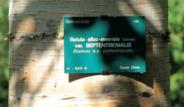 Balades-22-5013.JPG