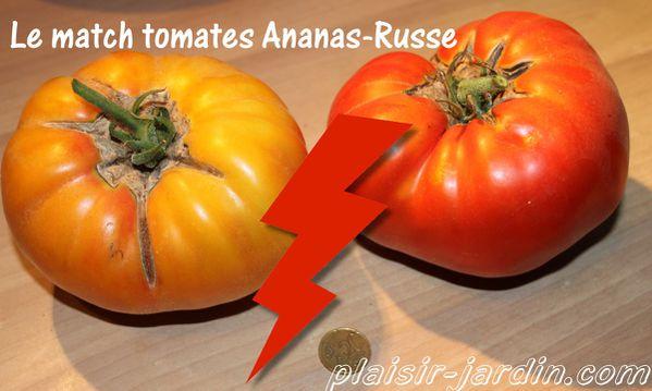 match tomates