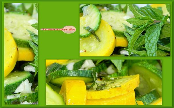 mosa-courgettes.jpg