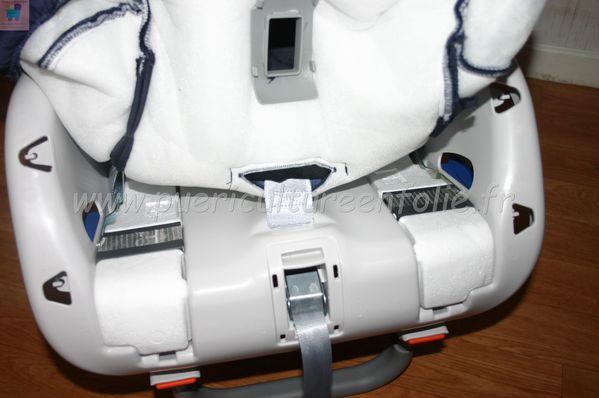 TSR Watermark - 0558