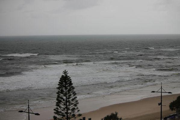 Surfers 3094