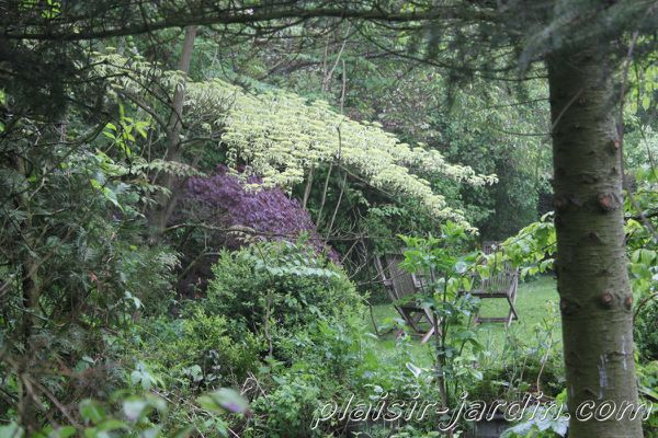 Visite-jardin-Sylvie-12.jpg
