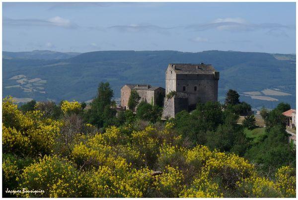 Chateau de Montaigut 01