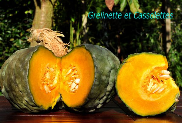 Courge25T.jpg