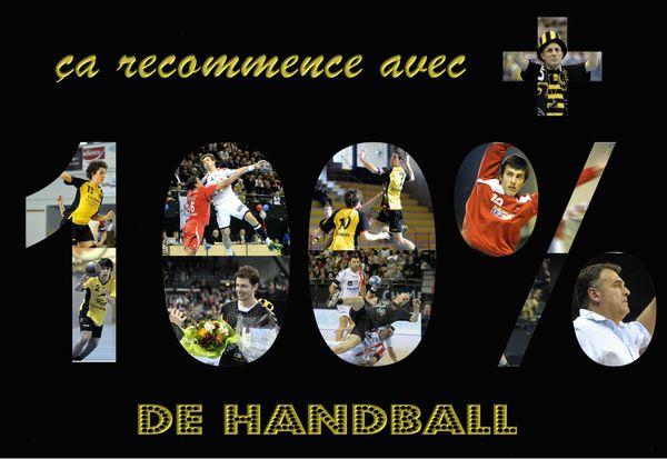 le-panneau---100--de-Handball---inscription.JPG
