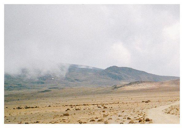 kilimandjaro 24 bis