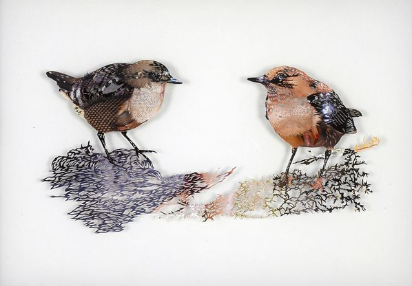 12_tom-gallant-dipper-2006-paper-cuts-glass--wood-34-x-48cm.jpg