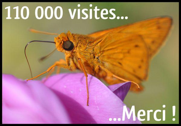 110000-visites-illustration-dellerie