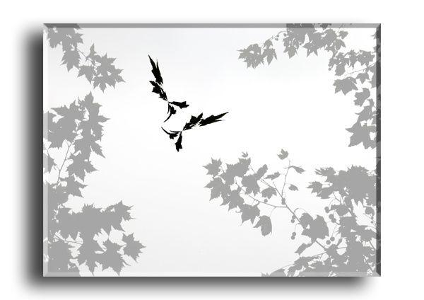 Feuilles de platanes (parc de Lunel)
