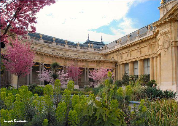 Le Petit Palais jardin 1