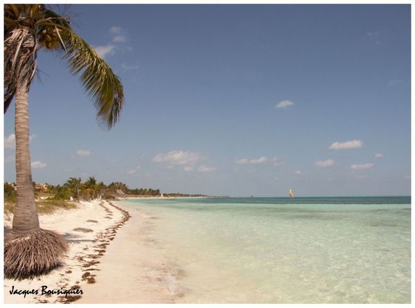 Cayo Guillermo 05