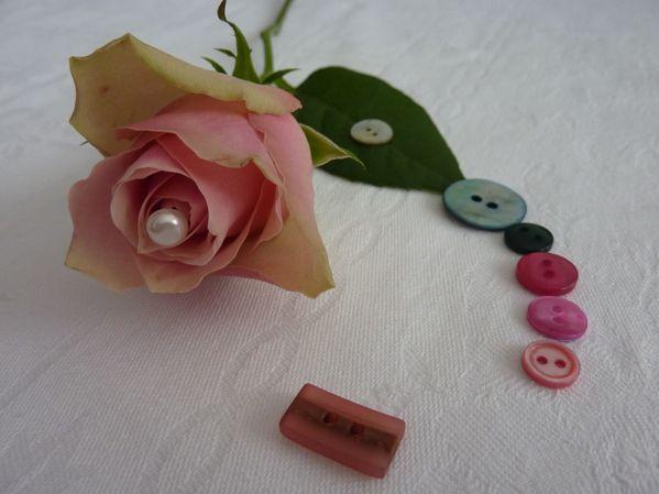 Rose-et-boutons.jpg