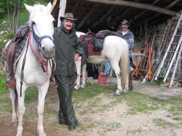 chevaux 2866
