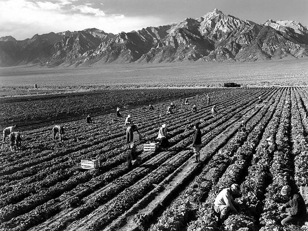 800px-ansel adams - farm workers and mt williamson