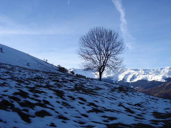 Randonnée dans les Pyrénées au Pic de Bacanère (2193 m)  5