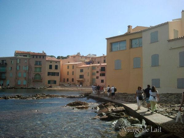 st tropez Photo0134