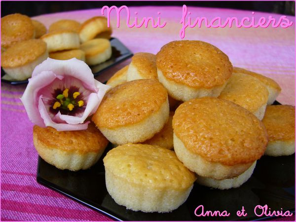 mini financiers