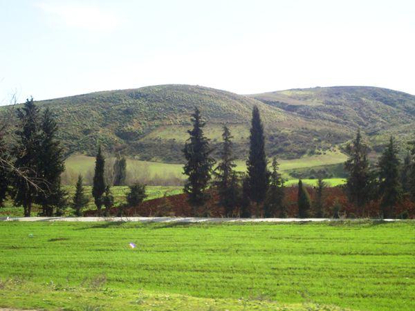 Collines-sans-arbres-N-2409.JPG