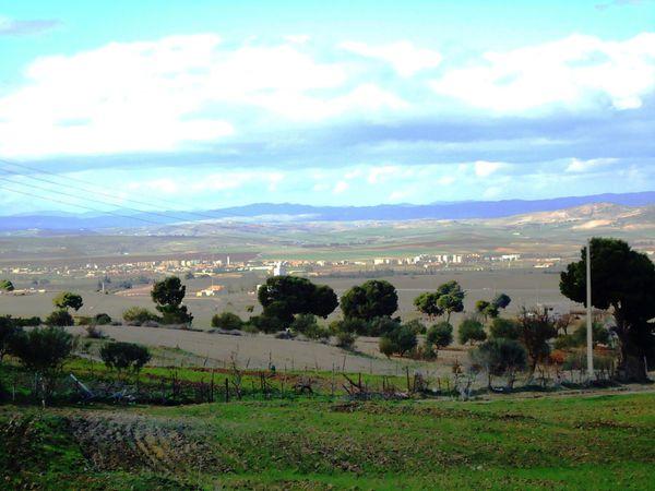 El-Hachimia.Vue-panoramique-JPG