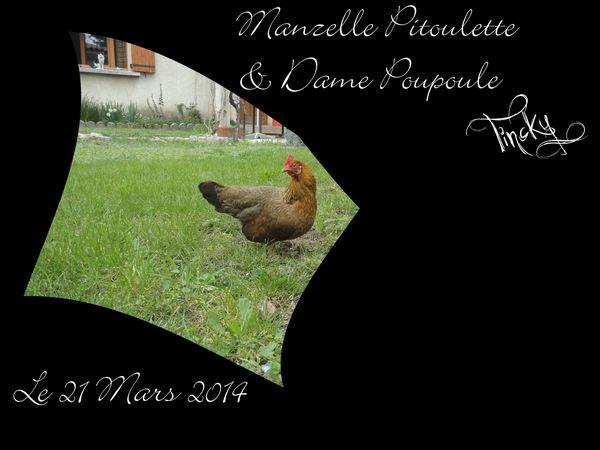 Le-21.03.2014-Dame-Poupoule-113.jpg
