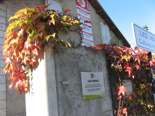 Saint-Gaudens-Shakk-Art-2011 3413