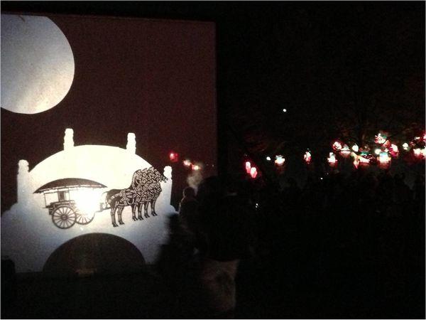 ombres-chinoises-parc-tete-d-or-fete-des-lumieres-2013.jpg