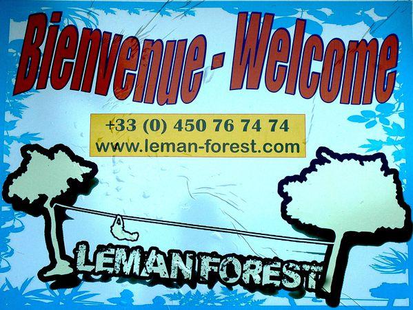 LEMAN-FOREST_12.jpg