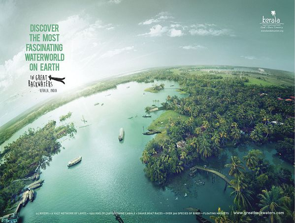 Backwater Campaign Img2